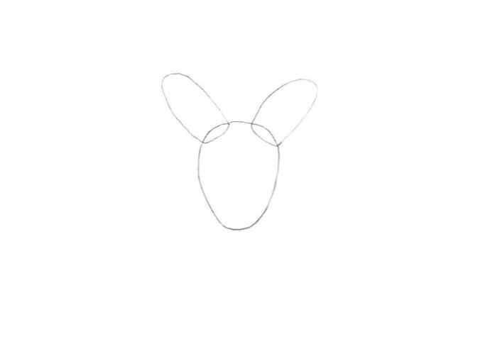 Comment Dessiner Un Kangourou Design Et Illustration Developpement De Sites Web Jeux Informatiques Et Applications Mobiles