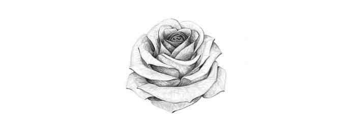 Ongebruikt Hoe een roos te tekenen / Ontwerp & illustratie | Website LT-22